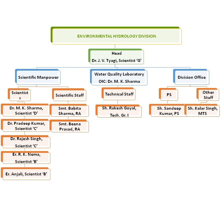 EHD Division Structure
